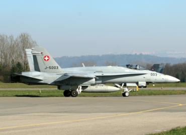 Swiss Hornets Nest Payerne
